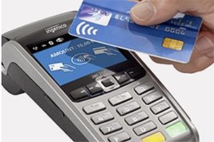 Ingenico IWL255 Credit Card Machine